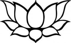 lotus-image-2